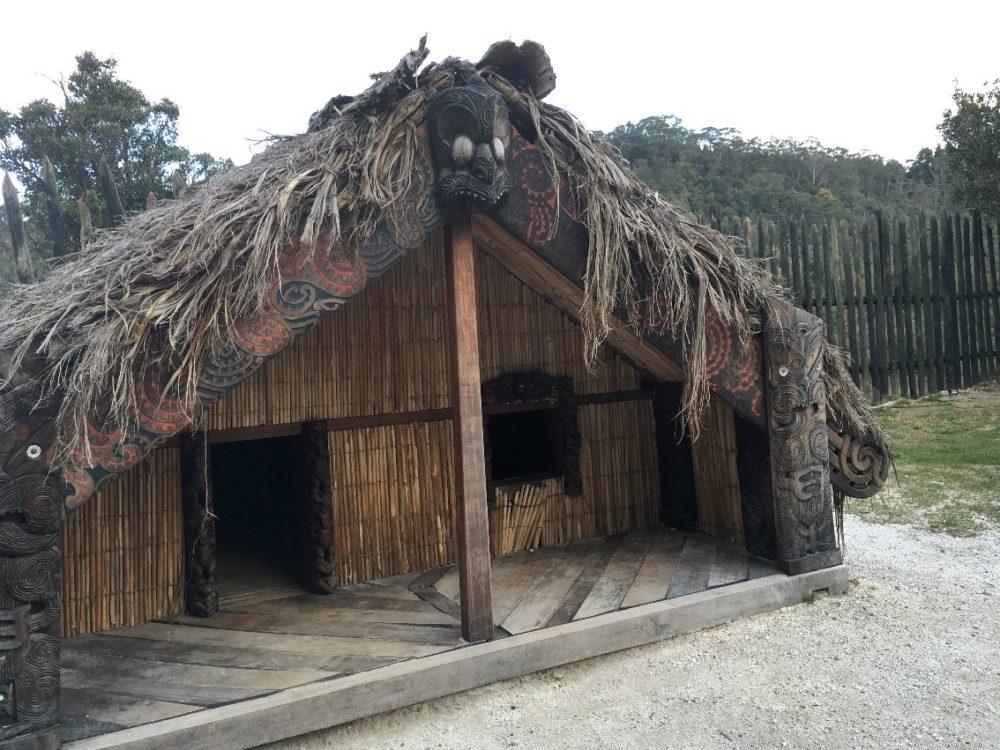 オークランド ロトルア マオリ族