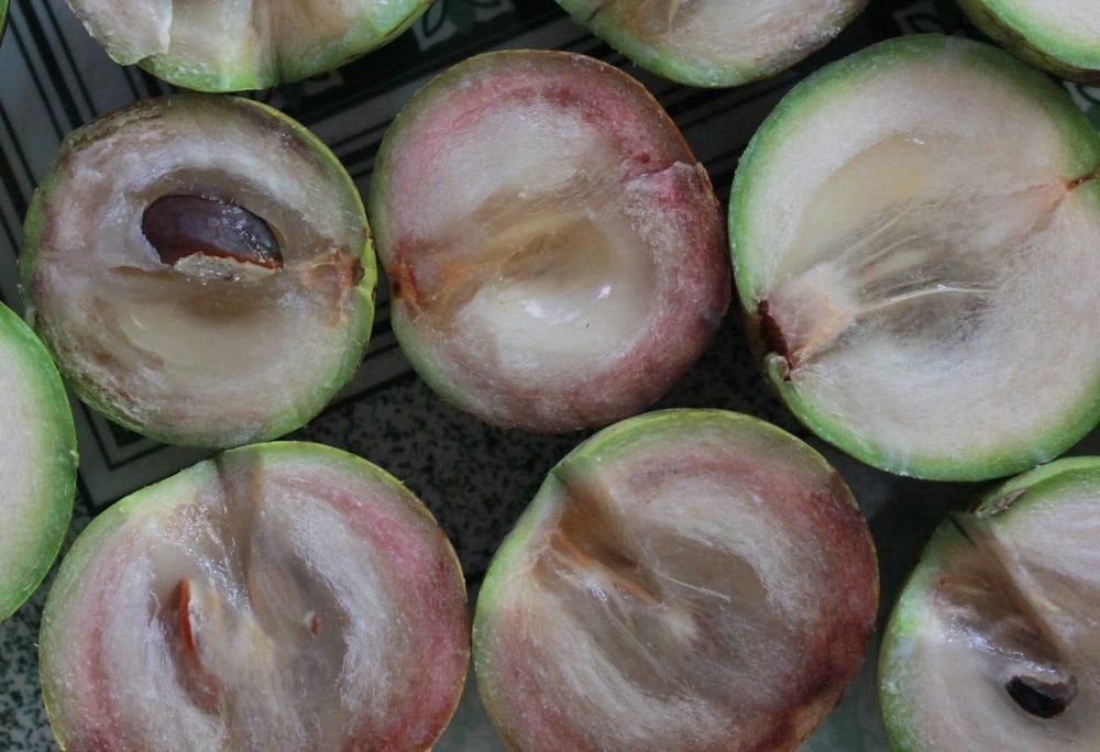 東南アジア トロピカルフルーツ スターアップル