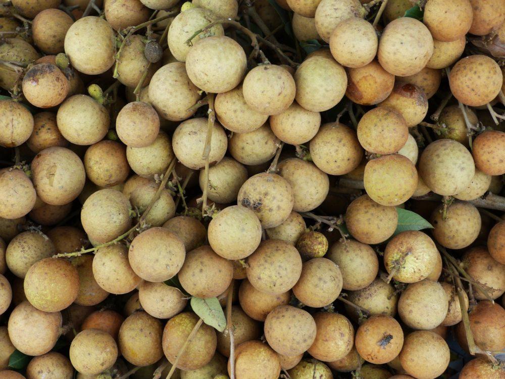 東南アジア トロピカルフルーツ ロンガン
