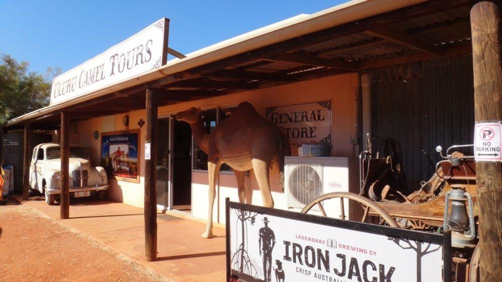 オーストラリア エアーズロック ラクダ牧場