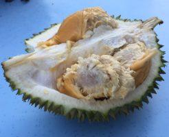 マレーシア ドリアン フルーツの王様